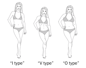 female-somatotypes
